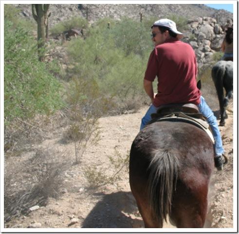 horse's ass, meet a pony