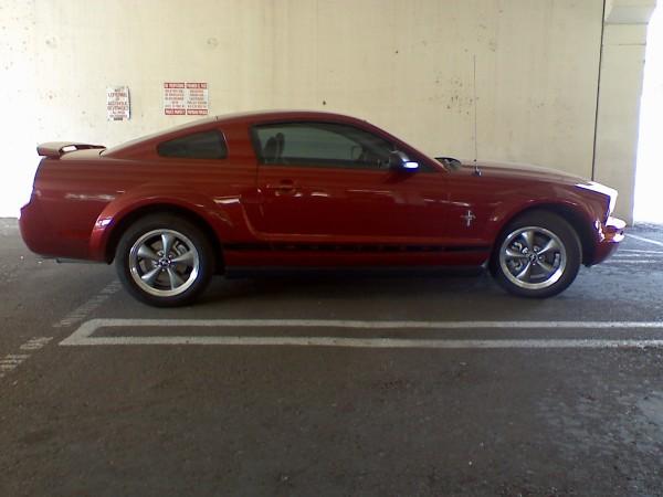 LAF Mustang