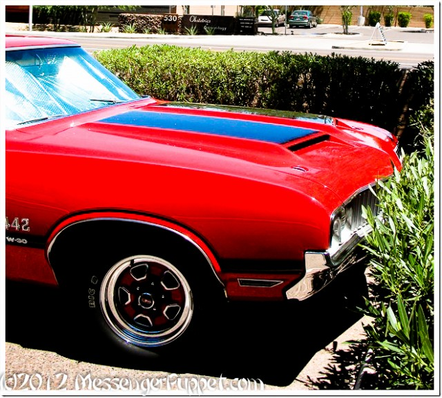 1970 Oldsmobile Cutlass 442 hood